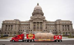 Great Big Truck