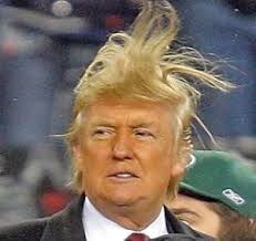 Trump Bad Hair Day