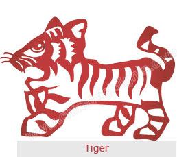 2015-tiger